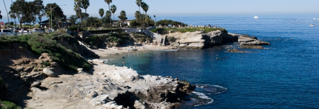 Relax on the Beach at La Jolla Cove