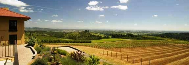 Go Wine Tasting in the Willamette Valley