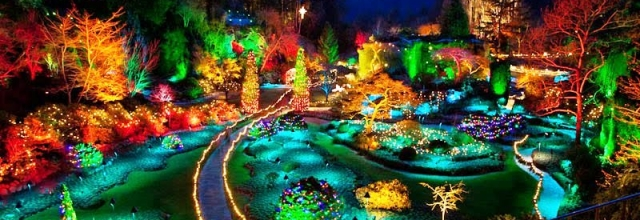 Discover the Magic of Christmas at the Butchart Gardens