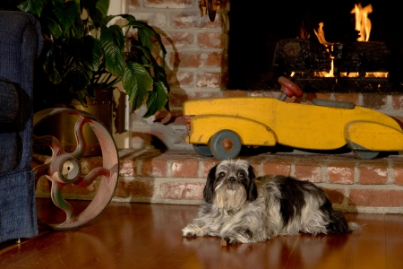 Pet Friendly Sonoma Cottage (& Courtyard Rooms!)