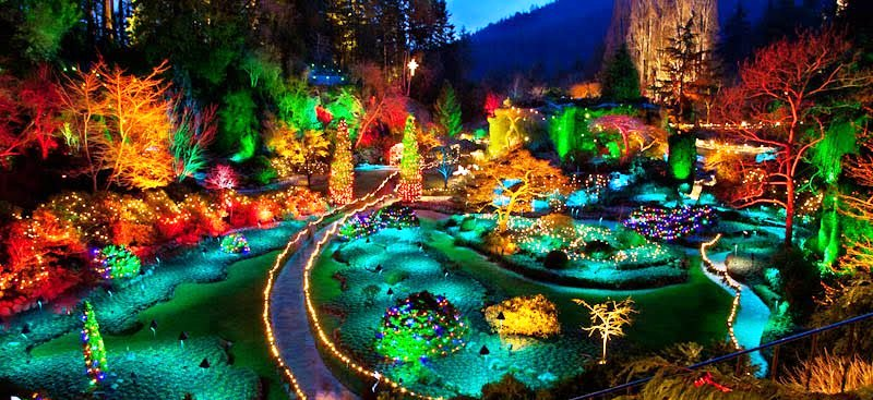 Discover the magic of christmas at the butchart gardens - Butchart gardens tour from victoria ...