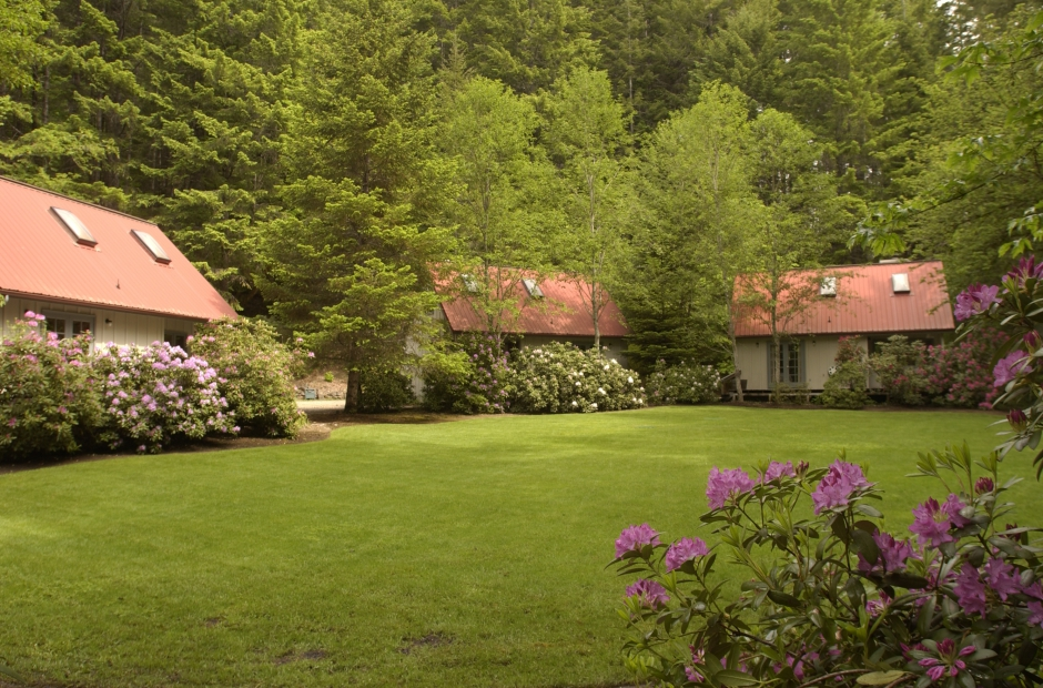 Steamboat Inn Idleyld Park Oregon Bed And Breakfast