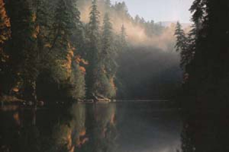 Fly Fishing on the North Umpqua River